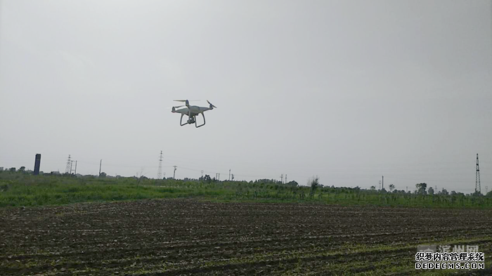 滨城区市东街道城管执法中队空中巡查罂粟种植