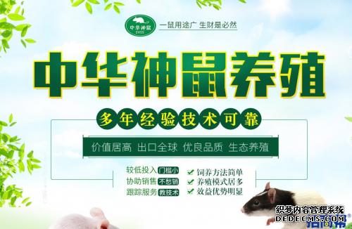 """生态养殖,中华神鼠养殖被誉为""""热门网页游戏私服体系"""""""