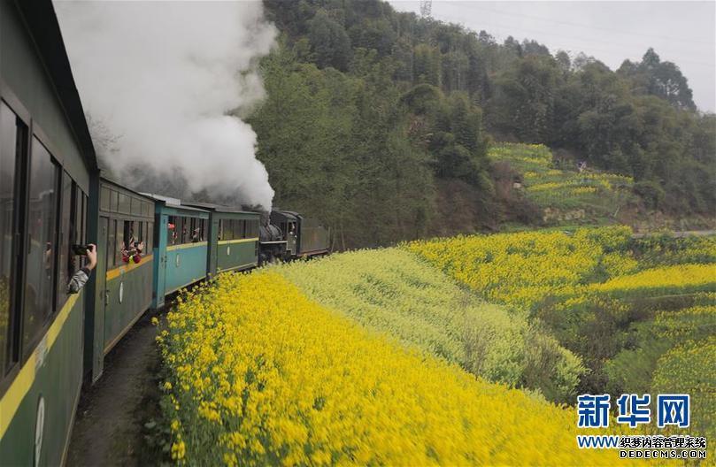 """(春季美丽生态)(9)四川犍为:""""开往春天""""的小火车"""