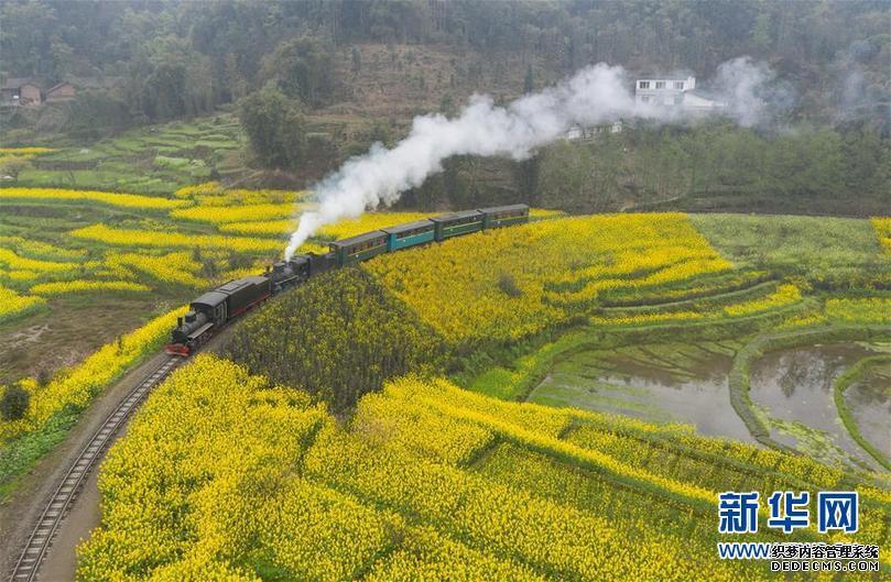 """(春季美丽生态)(5)四川犍为:""""开往春天""""的小火车"""